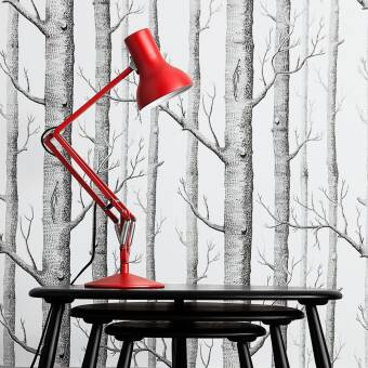 Anglepoise Type 75 TM Mini Desk Lamp lampa biurkowa kolory